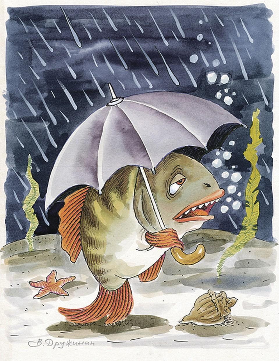 Картинки карикатуры дождь