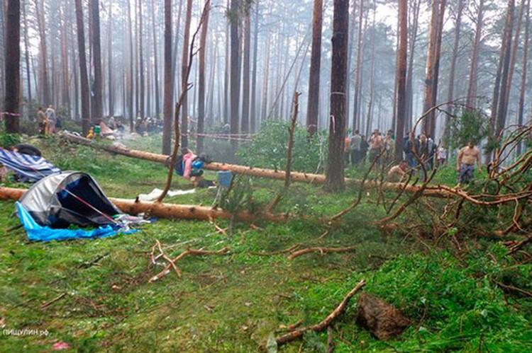 Экологи: Почвенный слой в районе палаточного лагеря постепенно уничтожался