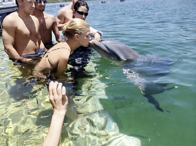 Настя: «Хотела бы я еще раз вот так поплавать с дельфинами!»