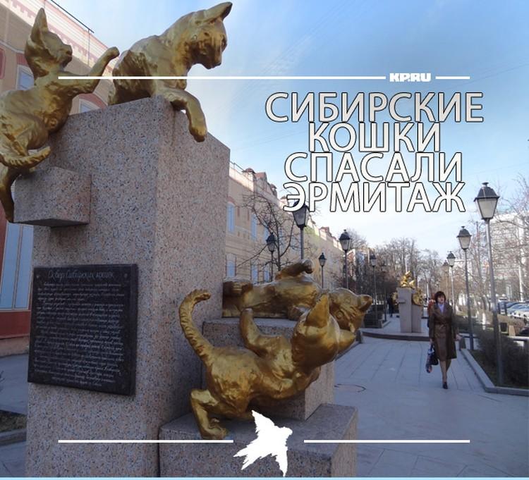 В честь сибирских кошек в Тюмени назвали сквер.