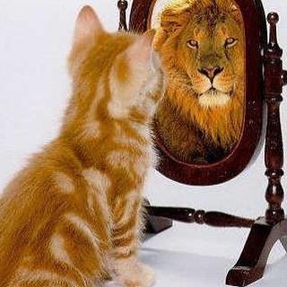 Дзюба у зеркала